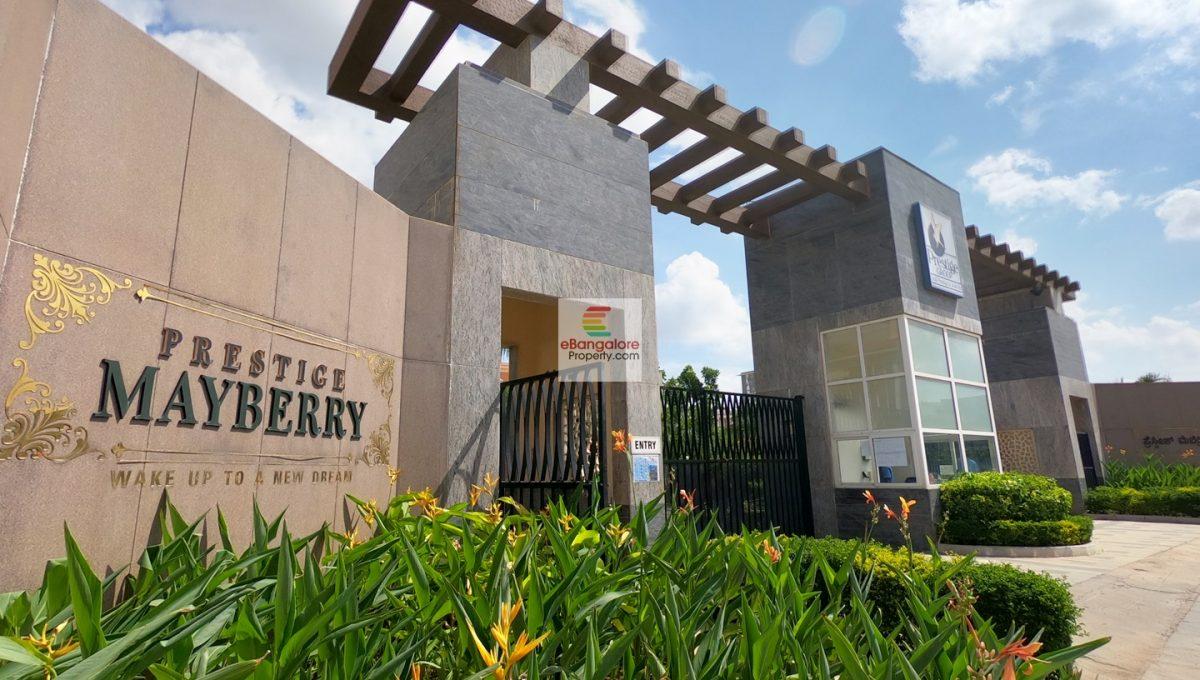 Prestige-Mayberry-entrance-arch.JPG