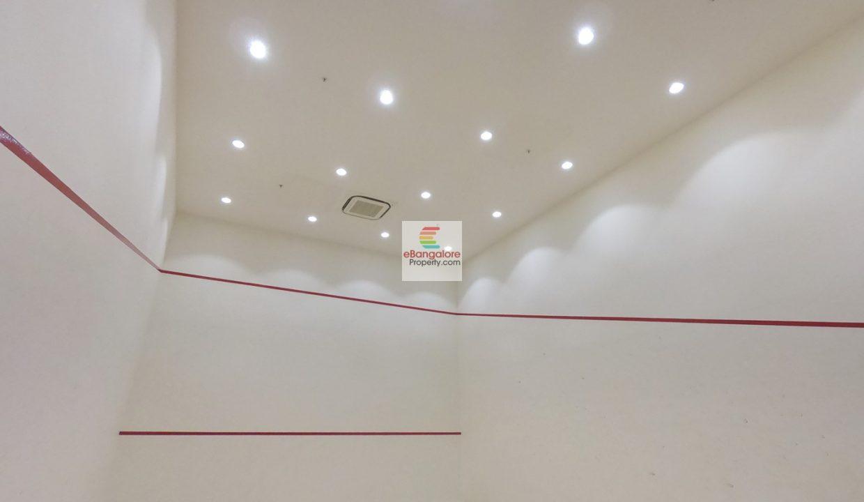 squash-court2