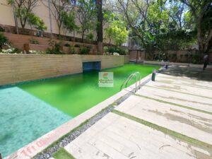swimmin-pool.jpg