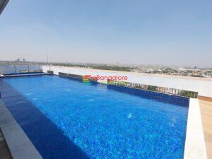 rooftop-pool.jpg