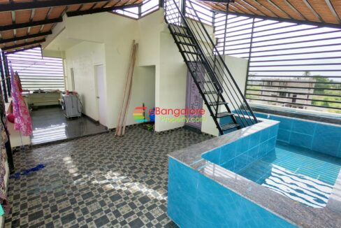 swimming-pool-1.jpg